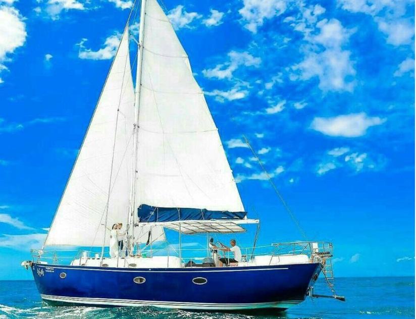Tekne Yarışında Ne Tür Tekneler Kullanılır?