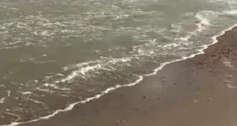 Deniz Seviyesi Nedir?