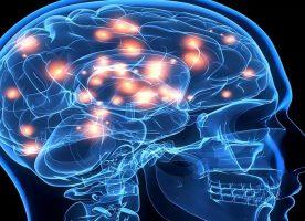 Beyni Işıkla Kontrol Etme