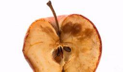 Elma Neden Kahverengileşır?