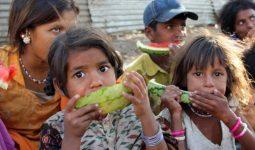 Poorizm Nedir?