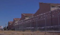 Devlete Göre Hapis Oranları