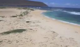 Ni'ihau Hawaii Adası Neden Yasak
