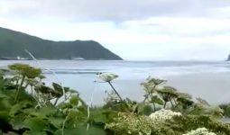 Aleut Adalarının Sınırları Nerede?