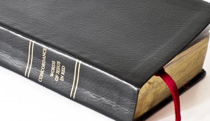 Evrim ve Din Arasındaki Bağlantı Nedir?
