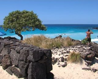 Kua Körfezi Ve Hawaii Adaları