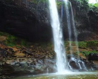 Cross River Ulusal Parkı'nda Yaşam Nasıldır?