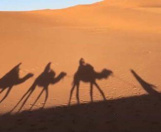 Neden Fes Sahra Çölünü Ziyaret Etmeliyim..!