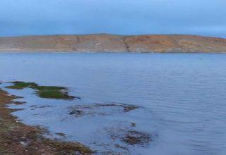 Manasarovar Gölü Hakkında İlginç Bilgiler