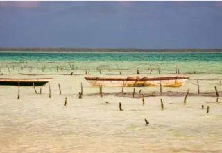 Kiribati'nin En Büyük Endüstrileri Nelerdir?