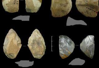 Neandertaller Neden Yok Oldular?