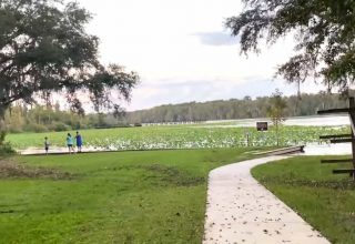 Büyük Tutkular Clay County Florida
