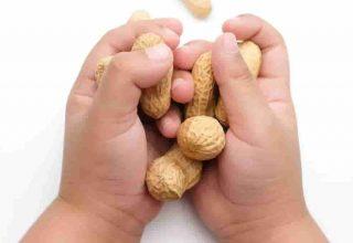Gıda alerjisi'ne Beş Popüler Efsane Açıklama