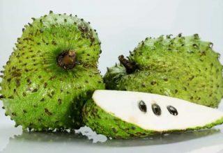 Soursop Nasıl Bir Meyvedir?